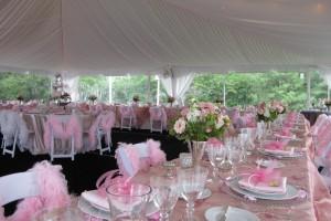 40x40 Bridal Shower Tent