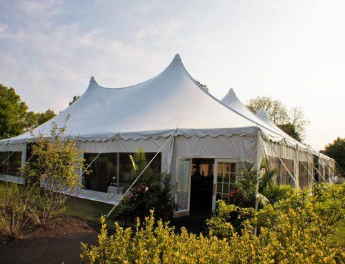 80×100 Century Tent